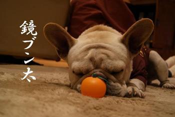 新年挨拶3.JPG